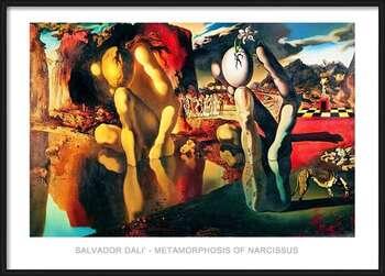 Uokvireni plakat Salvador Dali - Metamorphosis Of Narcissus