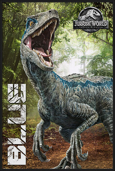 Uokvireni plakat Jurassic World Fallen Kingdom - Blue